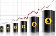 رشد قیمت نفت بر اساس متغیرهای بنیادی و عوامل تکنیکی