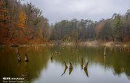 طبیعت چشم نواز پاییزی در باداب سورت و دریاچه چورت مازندران