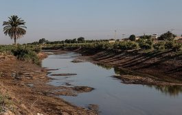 کاهش شدید آب رودخانه کرخه نور-هویزه