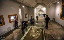 موزه باستان شناسی شوش