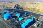 افزایش تولید کنسانتره آهن شرکتهای بزرگ