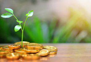 حضور صندوقهای جسورانه در بخشهای مختلف اقتصاد کشور