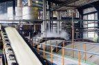 رشد فروش شکر از سوی تولیدکنندگان شرکت های قندی